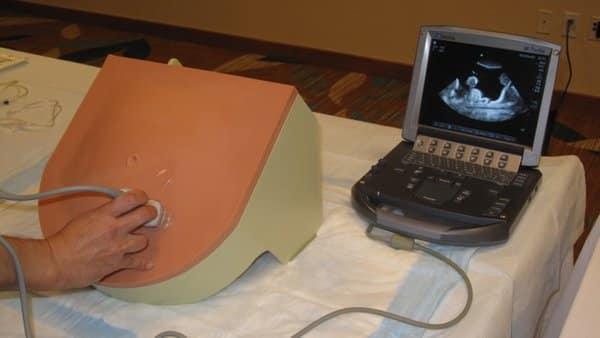 Paracentesis Simulator